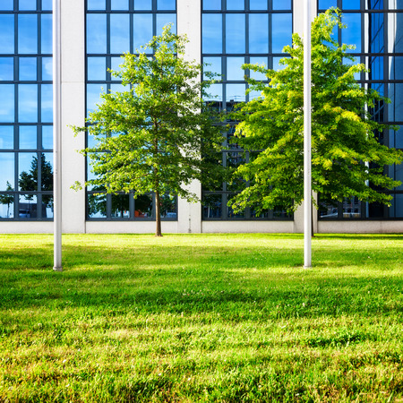 lawns: Modern glass office building exterior. Backyard with lawn and trees. Business and success concept