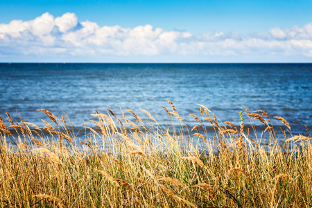Seaside with cloudy sky, blue water, dune grass and wind. Late summer landscape and vacation background. Baltic sea coast, Germany, travel destination 写真素材