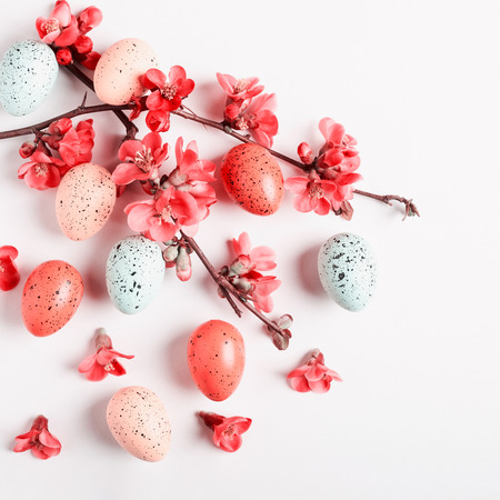 Easter greeting card background with japanese quince flowers and eggs. Holiday composition on white background. Spring arrangement and design element, flat lay, top view