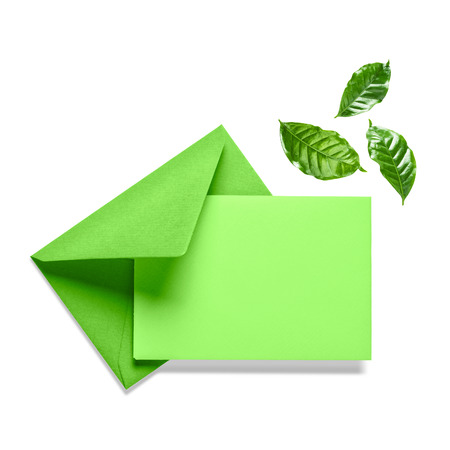 Green envelope with card and leaves isolated on white background. Composition and design element. Nature and environment themes