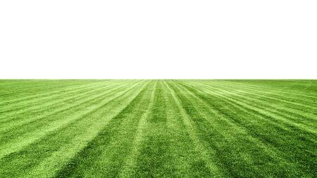 stadium green grass lawn isolated on white background, soccer football field, design element Archivio Fotografico - 129495392