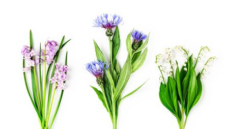 Bluebells, cornflower and lily of the valley flower collection. Garden flowers in spring composition isolated on white background. Top view, flat lay. Floral design element and creative banner