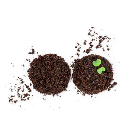 Soil with green sprout isolated on white background. Seedling growing out from flower pot creative composition. Top view, flat lay. Environment conservation concept