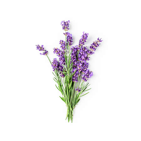 Lavender flowers and leaves bunch isolated on white background with clipping path. Top view, flat lay. Floral design element. Healthy eating and alternative medicine concept