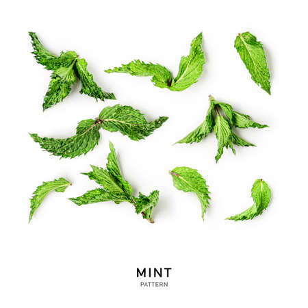 Creative pattern with fresh mint leaves. Composition and collection on white background. Top view, flat lay. Floral design elements. Healthy eating and dieting concept