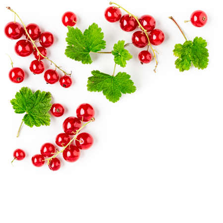 Red currant berries and leaves composition and creative layout isolated on white background. Healthy eating and dieting food concept. Summer fruits arrangement and design elements. Top view, flat lay