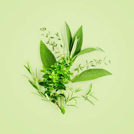 Rosemary, marjoram, sage and thyme arrangement. Creative composition with fresh herbs bunch on green background. Top view, flat lay. Floral design. Healthy eating and alternative medicine concept