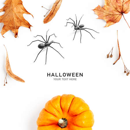 Creative layout with pumpkin, autumn leaves and spiders. Halloween composition on white background. Top view, flat lay. Design elements and holiday concept