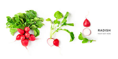 Fresh radish with leaves creative layout on white background. Healthy eating and dieting food concept. Whole and sliced fresh radishes composition and design elements. Top view, flat lay
