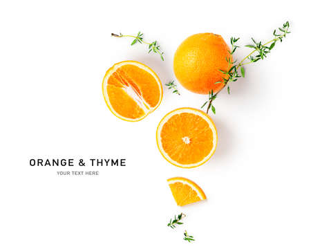 Orange citrus fruit and thyme creative layout isolated on white background. Healthy eating and food concept. Fruits and herbs composition. Flat lay, top view