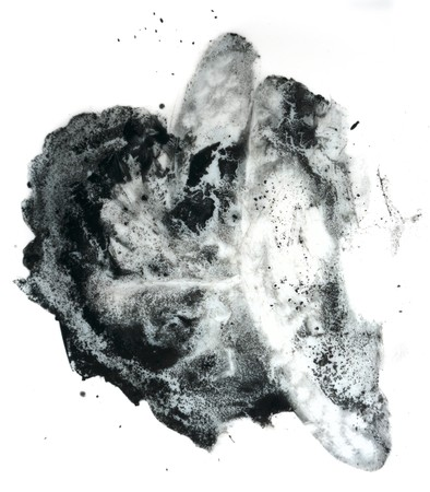 Abstract black spot for the background isolate on white Reklamní fotografie