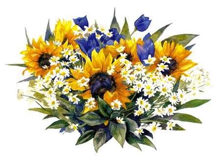 Composition with sunflowers and chamomiles on a white background. Watercolor painting. Reklamní fotografie - 75090470