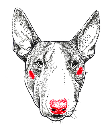 Bullterrier Dog Portrait. Print and pattern. Hand drawing