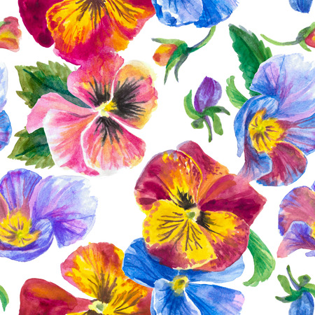 Colorful pattern, pansies isolated on white background.  Watercolor painting Reklamní fotografie - 75090479