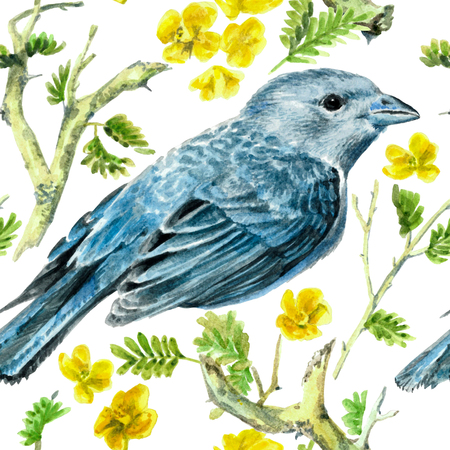 Watercolor blue bird on white background. Spring pattern