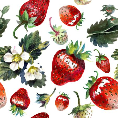 Strawberries isolated on white. Watercolor painting, pattern