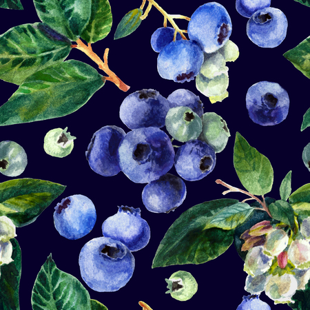 Blue berry isolated on black.. Watercolor painting, pattern, print