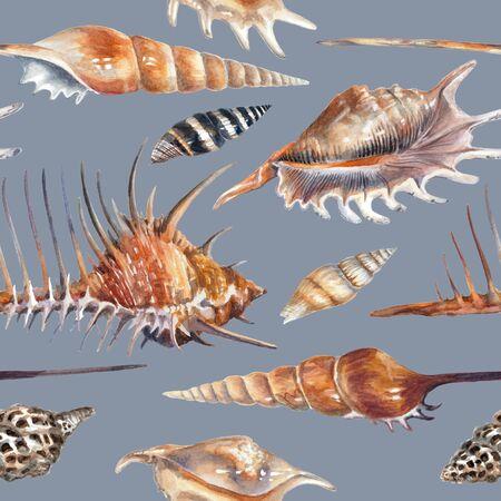 Watercolor pattern with seashells on a blue background Reklamní fotografie