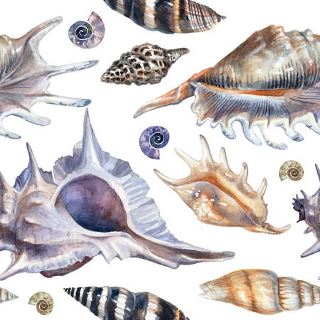 Watercolor pattern with seashells on a white background. Detailed painting in blue pastel colors Reklamní fotografie