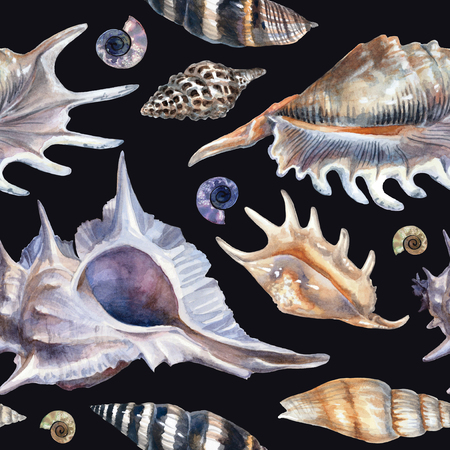 Watercolor pattern with seashells on a black background. Detailed painting in blue pastel colors