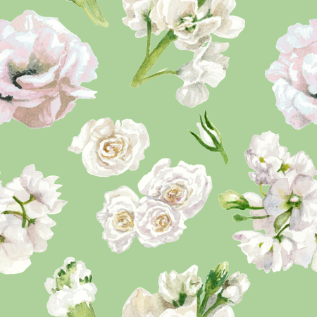 Pastel colors, floral pattern, white roses isolated on light green background. Watercolor painting