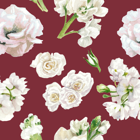 Pastel colors, floral pattern, white roses isolated on burgundy background. Watercolor painting