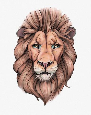 Portrait of a Beautiful Lion Reklamní fotografie - 75014610