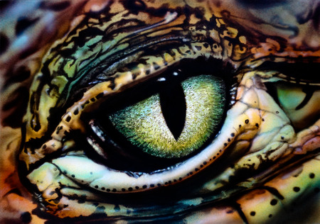 The eye of a lizard. Airbrush painting. Hand drawing