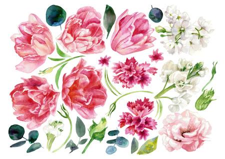 Set with flowers light pastel tones. Watercolor painting Reklamní fotografie - 75014819