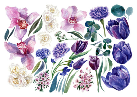 Set of tulips, roses and orchids. Watercolor painting Reklamní fotografie - 75014821