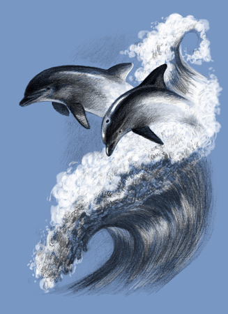 Two dolphins on a wave. Pencil drawing, hand picture Reklamní fotografie - 75014612