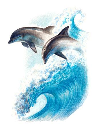 Kleur tekening: twee dolfijnen op een golf. Waterverfpotloden Stockfoto