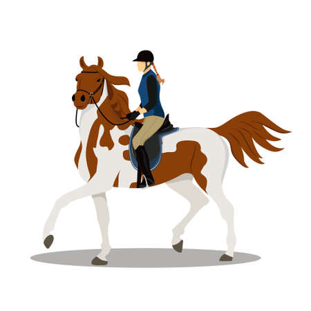 Woman on horse. Horse with rider. Jockey on horse. Horse riding. Equestrian Sport. Isolated Vector Illustration