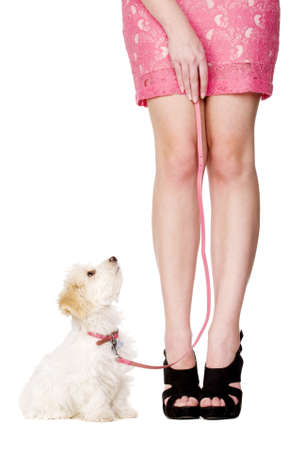 Small white puppy sat next to a woman