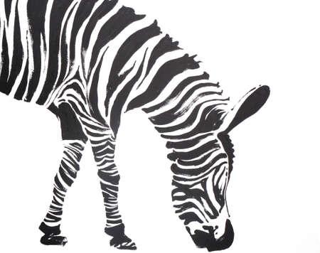 Zebra painting on a white background Banco de Imagens