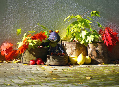 Colorful autumn shade with leafs, fruits and clothes cat Stock Photo