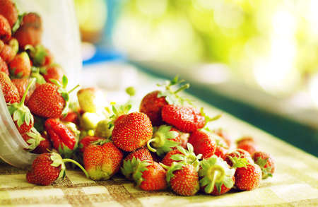 Fresh strawberry scattered on the tablecloth at the country house Stock Photo