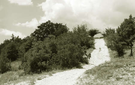 Black and White image of country road turn Stock Photo