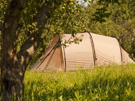 Summer camping - tourist tent in green forest