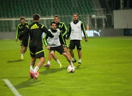 cesc: ZILINA, SLOVAKIA  - OCTOBER 8, 2014: Cesc Fabregas during a training session ahead Spain national team UEFA EURO 2016 qualifier against Slovakia Editorial