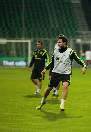 iniesta: ZILINA, SLOVAKIA  - OCTOBER 8, 2014: Cesc Fabregas during a training session ahead Spain national team UEFA EURO 2016 qualifier against Slovakia Editorial