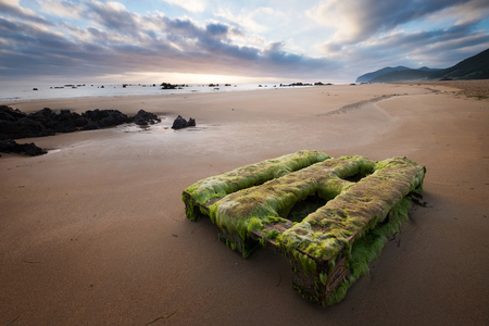 presence: Overgrown with algae wooden Pallet on the beautiful sand beach near Noja, Spain , as a symbol of Humans presence anywhere :(