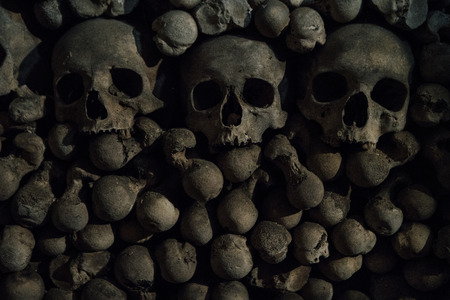 The tree Human skulls  on the bones background are in the dark catacomb night shoot Banco de Imagens