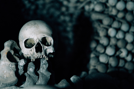 The Human skull and bones are in the dark catacomb night shoot