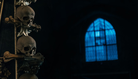 Humans skull in the dark with blue light window background still life. Horror place concept image. Фото со стока