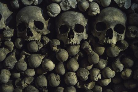 The tree Human skulls  on the bones background are in the dark catacomb night shoot Imagens