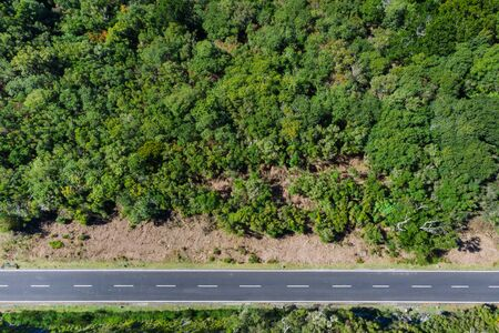 Top view aerial drone shot of a straight asphalt road leading in the green forest on Madera island, Portugal. Safety transport concept image.