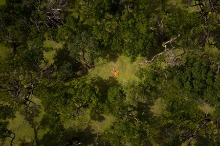 Man dressed bright orange sport jacket lying like a star on the green grass forest glade. Power of nature or freedom concept image.