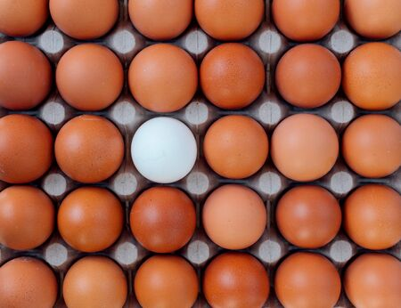 Egg tray top view with a rows of brown color eggs and one different white color egg in the center. Personal individuality or leadership concept image.