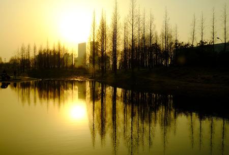 sun set: sun set